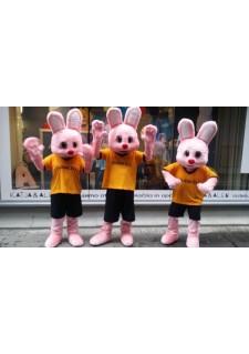 Duracell zajčki